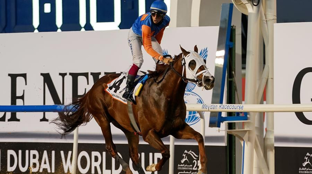 Tragedy at the Dubai World Cup Undercard races