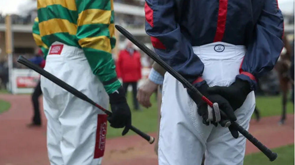 Using a whip: allowed during equestrian events or not?